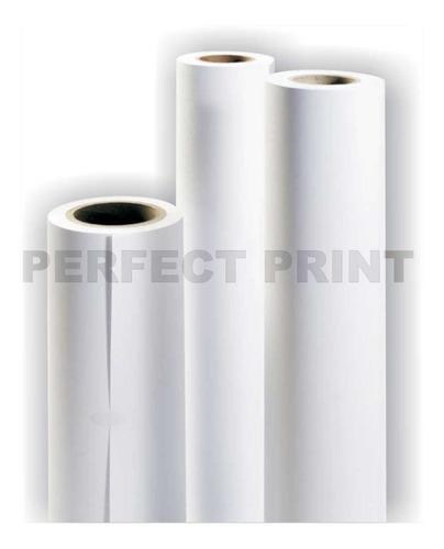rollo film transparente a3 30 cm x 30 mts tinta full color