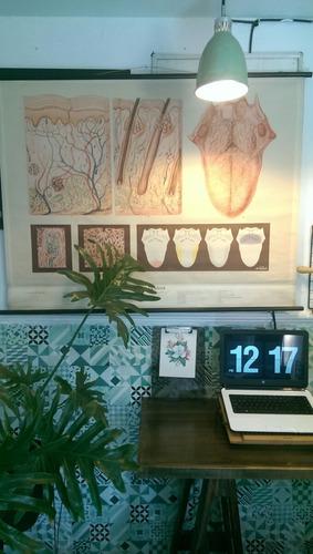 rollo lámina pared antigua/decoración vintage