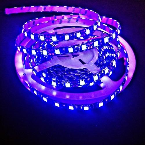 rollo led 5050 ultravioleta uv violeta 5 mt negra interior