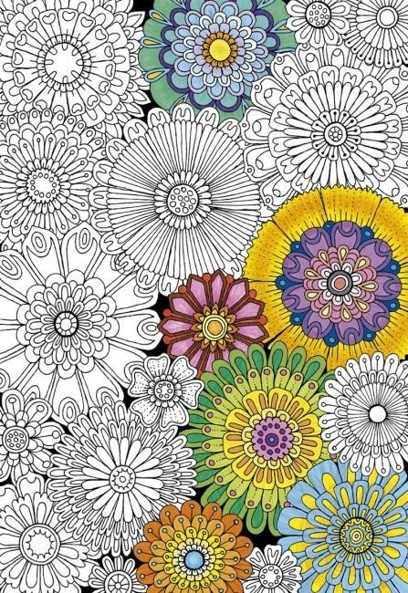 Rompecabezas 300 Piezas Para Colorear Grandes Flores Educa