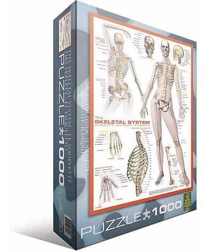 rompecabezas el cuerpo humano: sistema esquelético 1.000