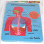 Rompecabeza Educativo Sistema Respiratorio Foami Cuerpo Hum