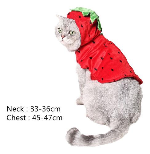 ropa con capucha lindo disfraz gato accesorios de animales