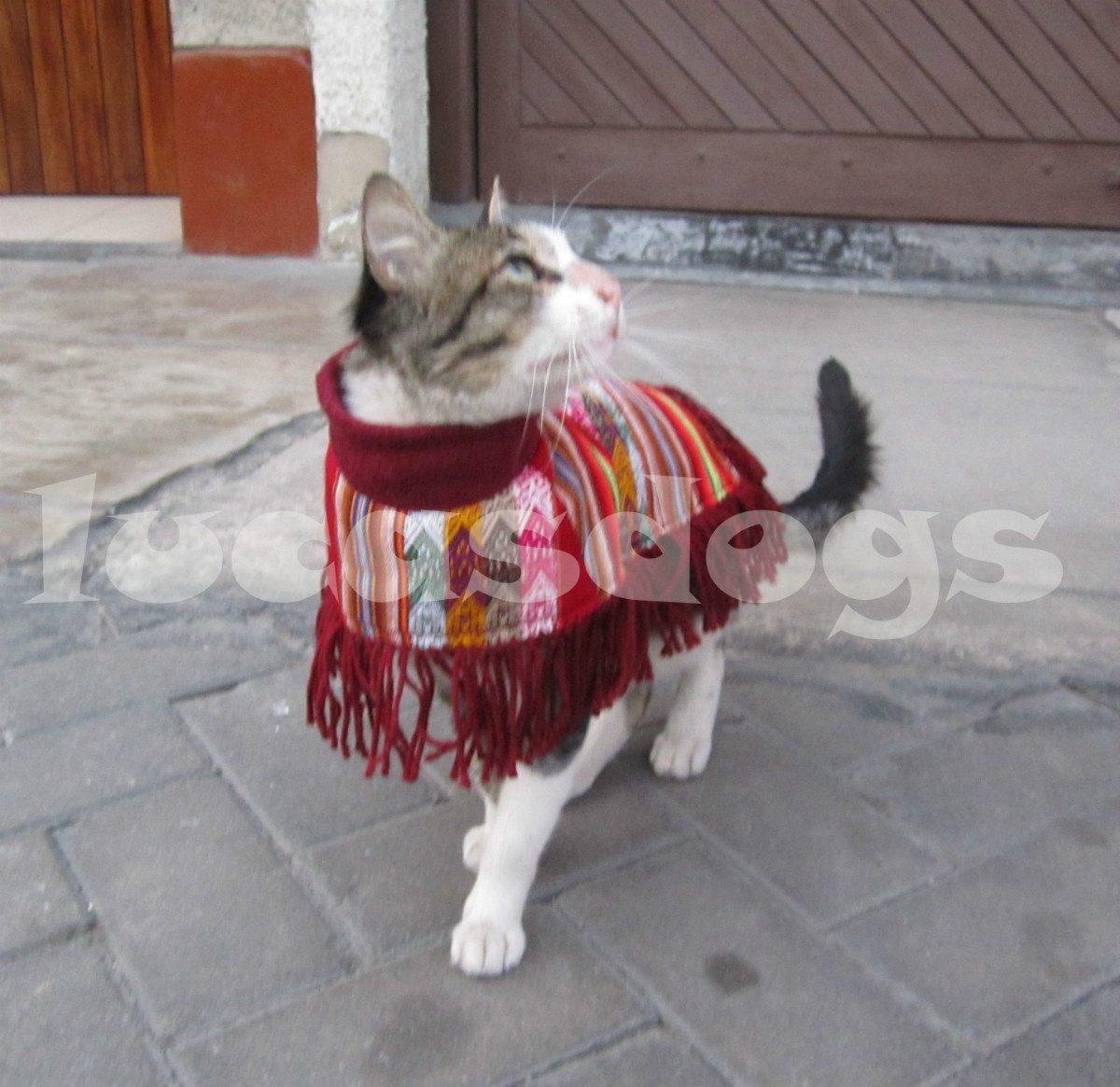 Ropa Para Gato Poncho Andino - S/ 29,00 en Mercado Libre