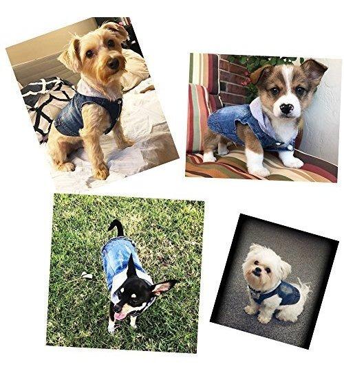 para Perros peque/ños medianos SILD Color Azul Chaqueta Vaquera para Perro con Capucha XXL