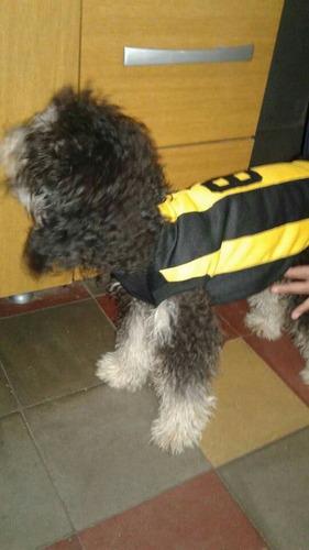 ropa para perro camiseta de peñarol talle m