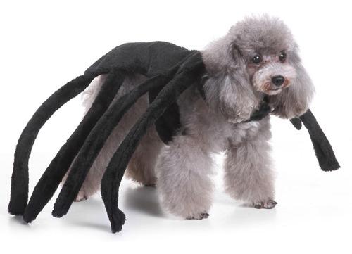 ropa para perros vestido animales