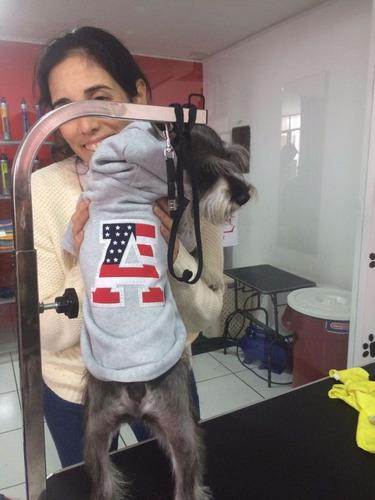 ropa perro mascota