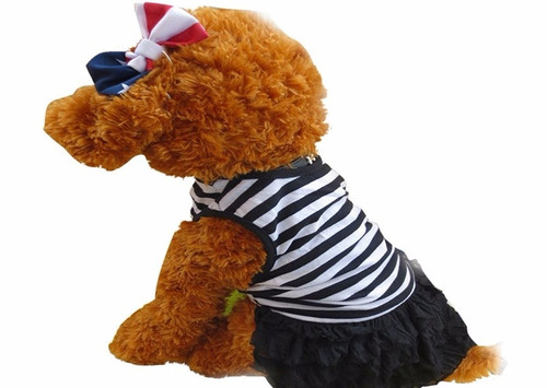ropa perro mascota vestido algodon rayas importado arequipa