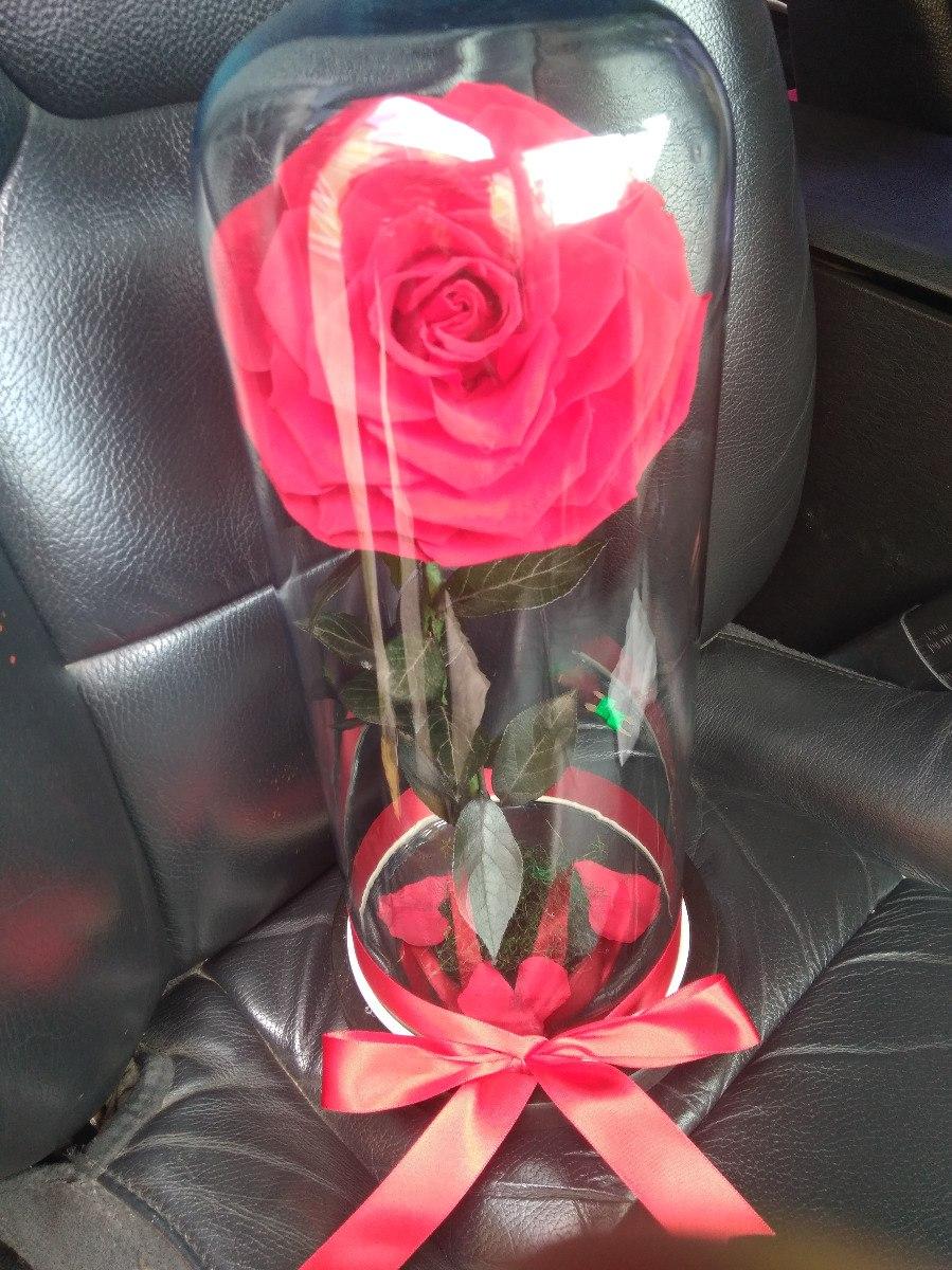 Rosa Dorada Con Grabado Una Eterna Eterna Rose Nunca La Regalo Marchitan