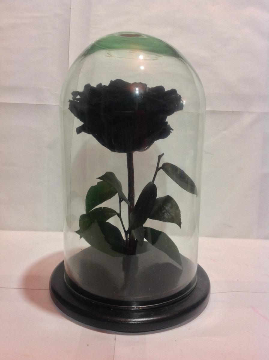 Muebles Exclusivos : Rosa negra aterciopelada rosas eternas bella y la bestia