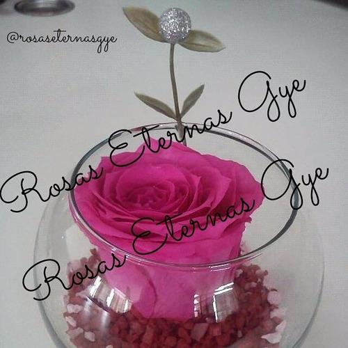 rosas eternas (desde 15 usd)