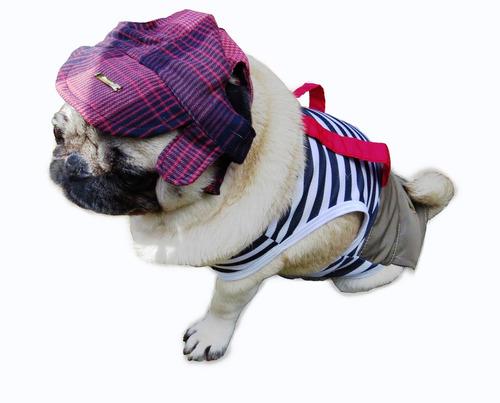 roupa cachorro/ fantasia