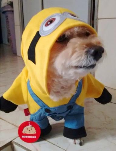 roupa fantasia cachorros