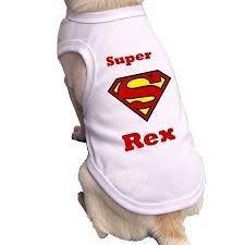 roupa personalizadas- para  cachorro & gato