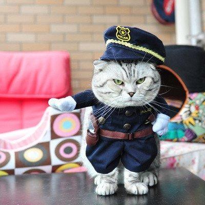 roupa pet fantasia para cachorro e gato policial p