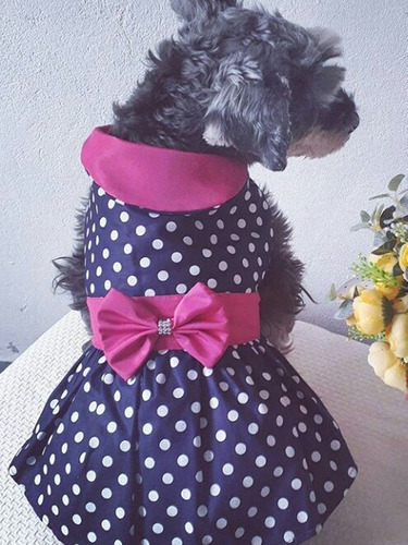 roupa pet vestidos verão de caes e gatos compre já