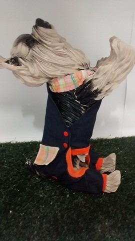 roupas cachorros cachorro