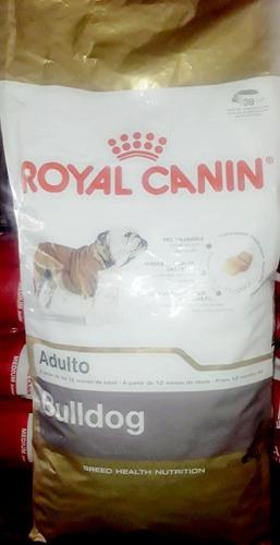royal canin alimento premiun