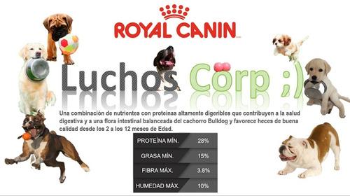 royal canin bulldog puppy 13.6 kg envio gratis luchos;)