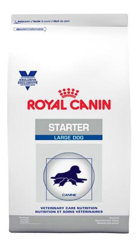royal canin starter large dog 12kg - nuevo original sellado