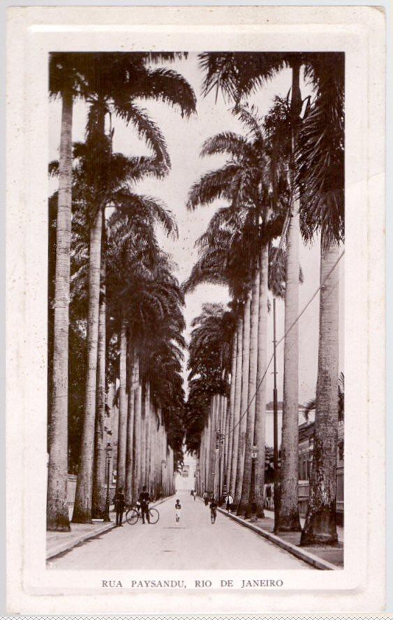 Image result for rua paissandu rj