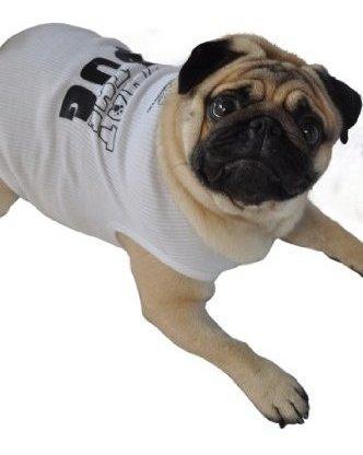 ruff ruff y meow perro tanque parte superior lo que el perro