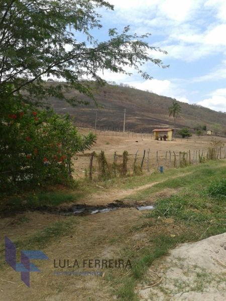 rural fazenda com 5 quartos - lf715-v