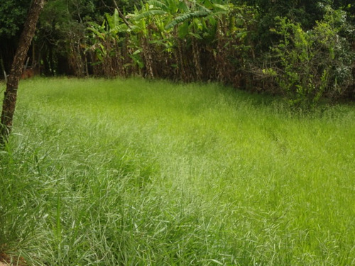 rural para venda, 0 dormitórios, rocinha - guaratinguetá - 688