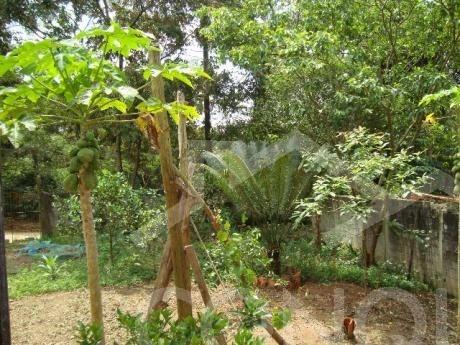 rural para venda, 2 dormitórios, tatetos - são bernardo do campo - 2390