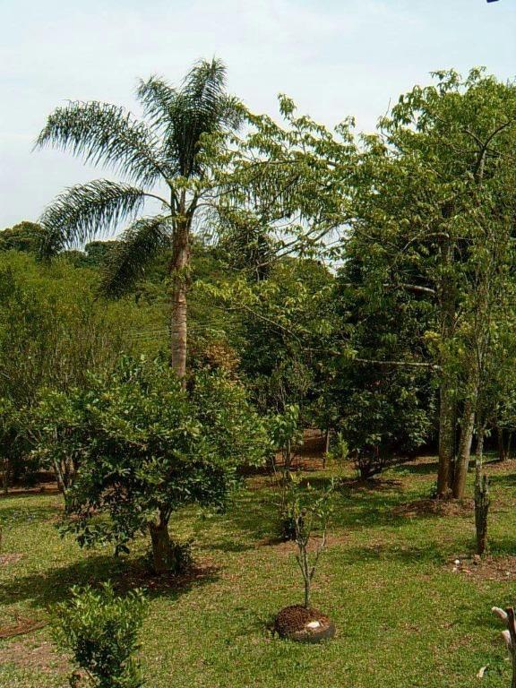 rural para venda, 3 dormitórios, ibiuna - ibiúna - 3449