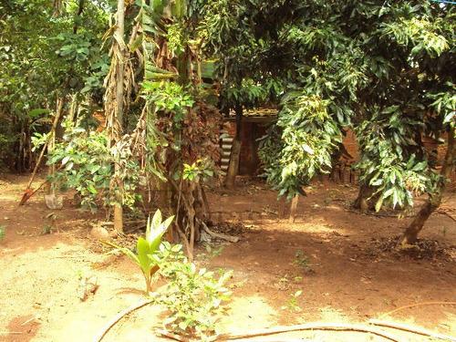 rural para venda, 5 dormitórios, vale do igapó - bauru - 679