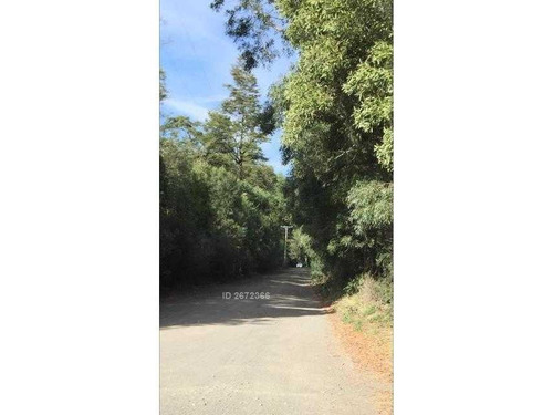 ruta 225 a v-69 camino a ralún