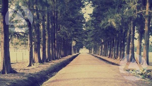 ruta 6, km 47 - san vicente