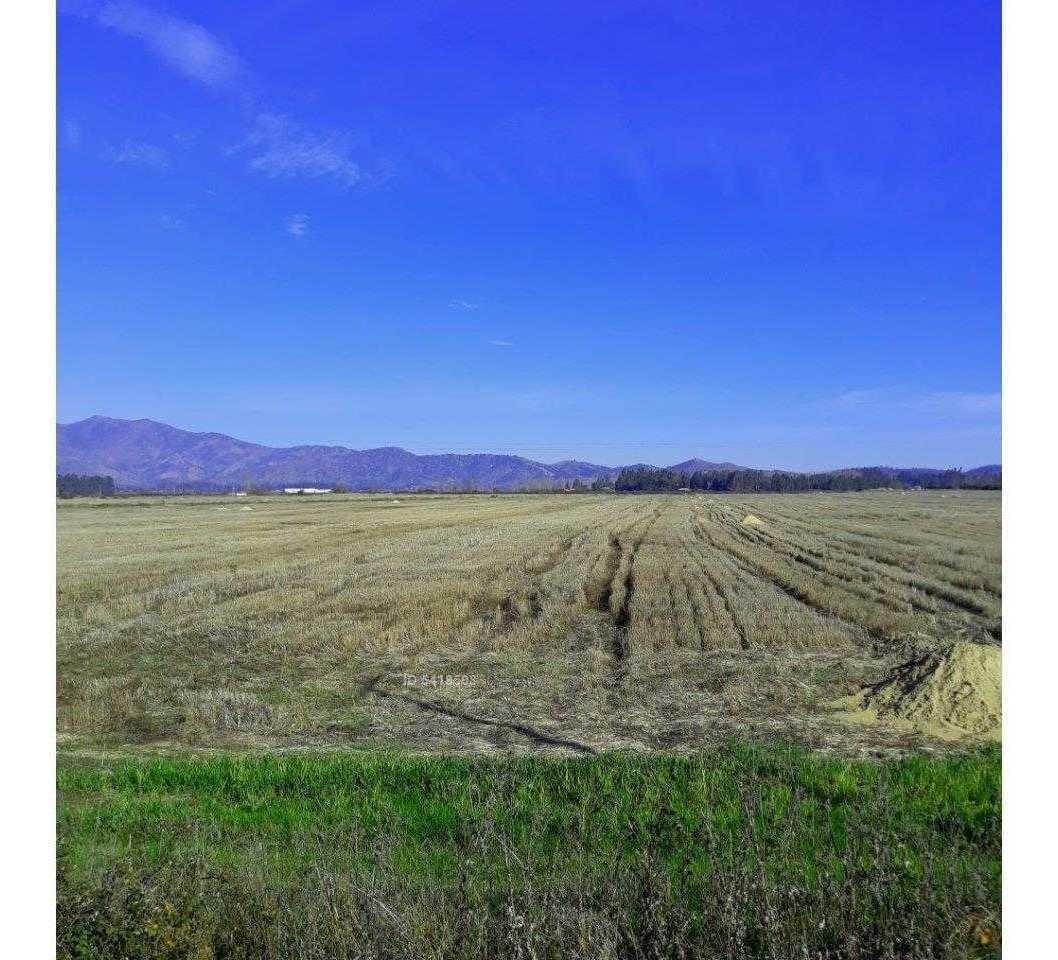ruta 90 5 km pasando de peralillo hacia pichilemu