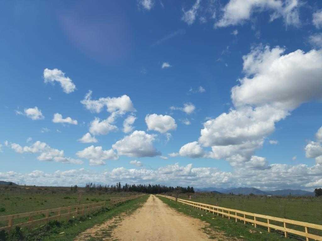 ruta 90 a 5 km de peralillo hacia pichilemu