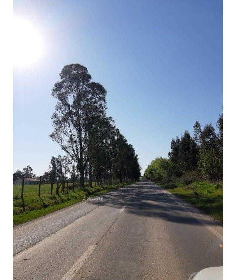 ruta k-55, camino las rastras a 15 km de talca