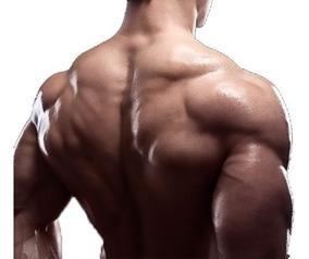 Plan 6 Meses Aumenta La Masa Muscular! Rutina Personalizada