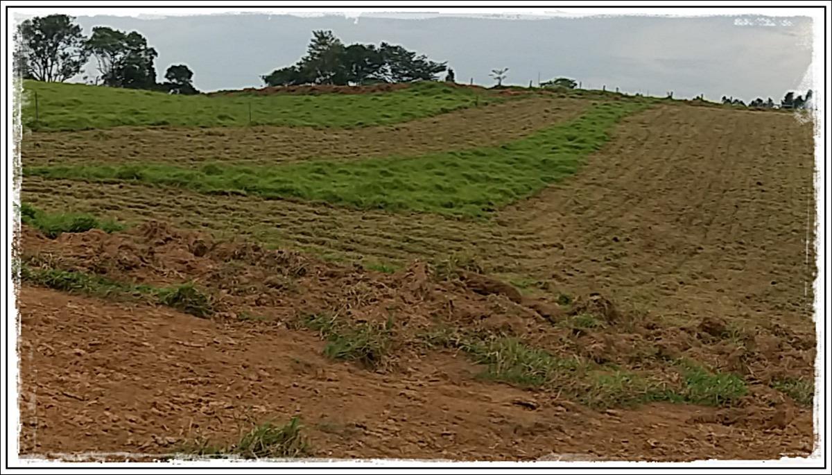 rw-c olha esse terreno!!!!