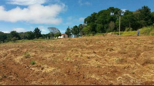 s terreno 1.000 m2 limpos, 100% plaino pronto para construir