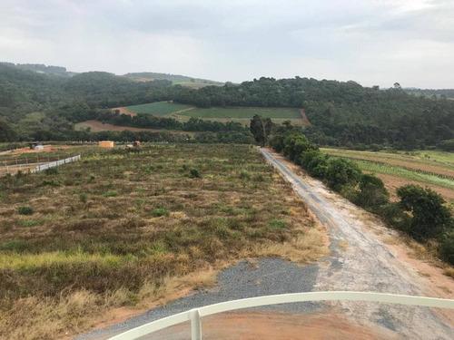 s terrenos de 1000 m² plainos, já cascalhados e ruas abertas