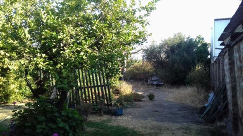 sabastopol / tanenenbaum