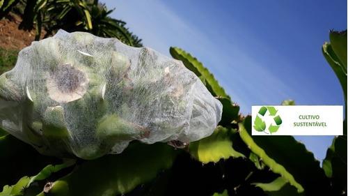 sacos agro tnt c/ elástico 18x26cm proteção frutas 1.000 un