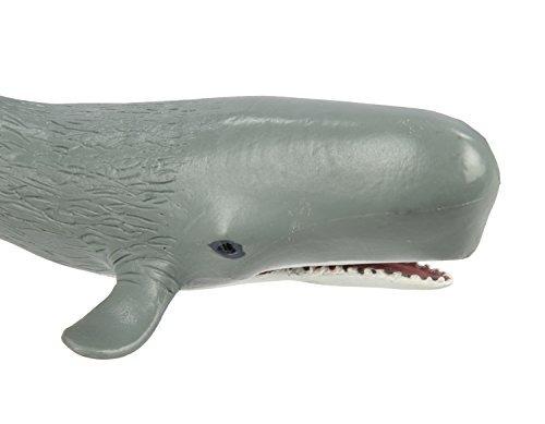 safari ltd safari sea life cachalote realista modelo de