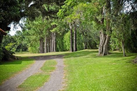 saia da loucura da cidade e curta a natureza aqui! 022