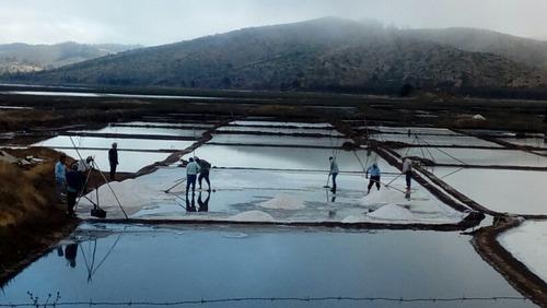 sal espumilla o flor de sal de mar de cahuil - 13 k.