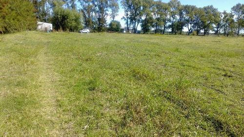 saladillo chacra 6 hectareas asfalto  2 ambientes ruta 205