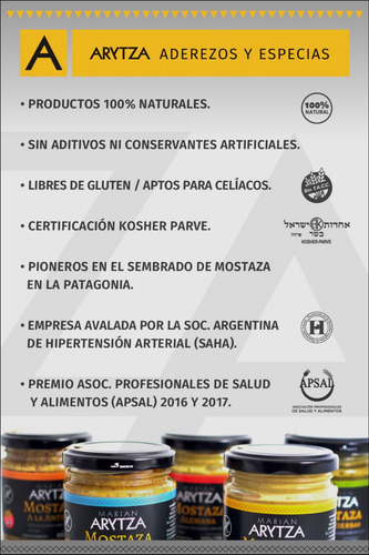 salsa barbacoa gourmet arytza 875g - 100% natural - sin tacc