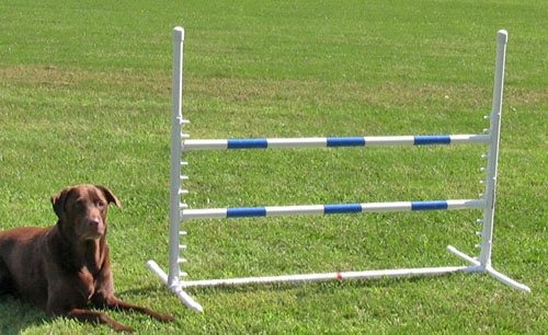saltos,la competencia de salto blanco ajustable