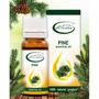 Pino - Pinus Sylvestris Oil - 100% Aceite Esencial